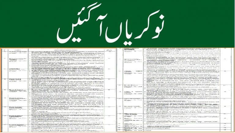 Planning and Development Punjab Jobs 2021 Application form