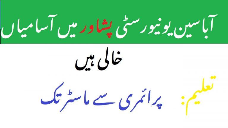 Abasyn University Peshawar Jobs 2021